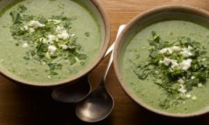 Herb-soup-007
