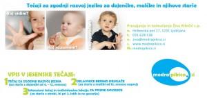 http://www.modrapikica.si/